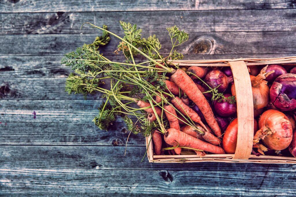 Duurzame Gastronomie